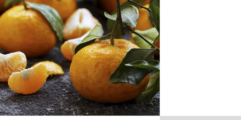 Tangerina, mexerica, bergamota: confira nove benefícios da fruta